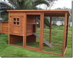 backyard-chicken-coop